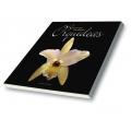 Belezas que Encantam Orquídeas Vol. 1