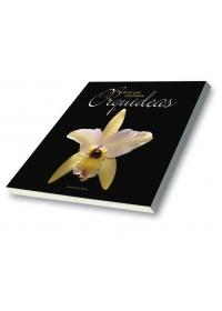 Belezas que Encantam Orquídeas Vol. 1og:image
