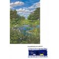 Laguinhos - Mini ecossistemas para Escolas e Jardins